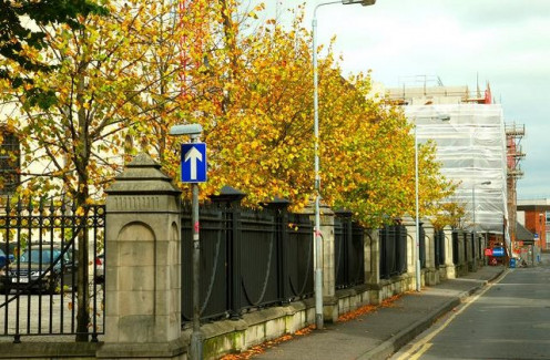 Autumn colours, at St Anne's Cathedral, corner of Donegall Street and Talbot Street, Belfast