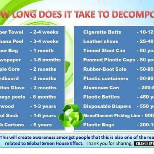 Visual of how long it takes to decompose