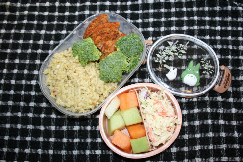 Bento boxes are a great way to bring snacks without spills.