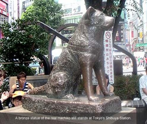Hachiko's statue at Shibuya station