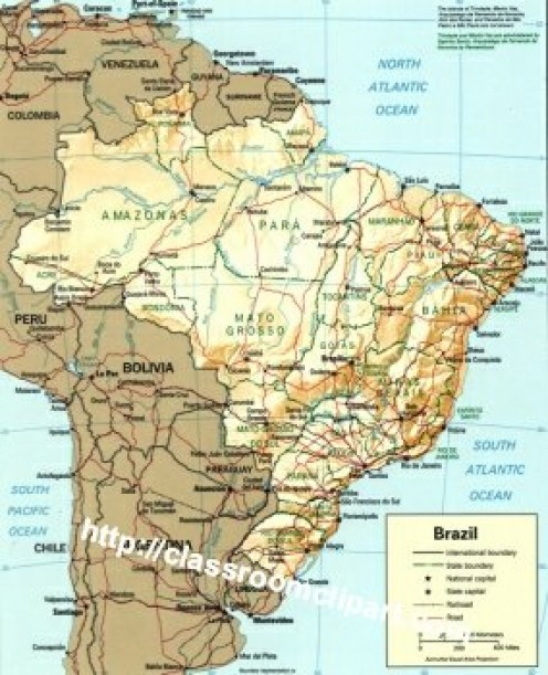 The Amazonian Basin in South America