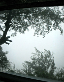 Trip to the Philippines: Behind the thick fog!