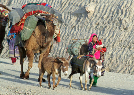 Kuchi nomads in Afghanistan