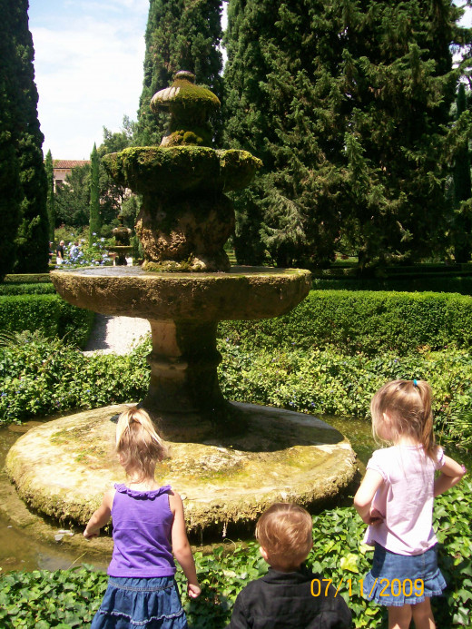 Looking into the fountain at the fish