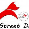 Streetdogsint profile image