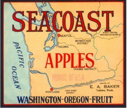free cross stitch pattern Seacoast Apples