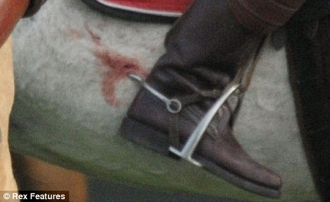 Spurs digging into flesh at a polo match. And yes, that's blood.