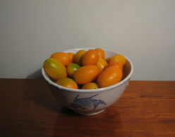 Growing Kumquat Trees