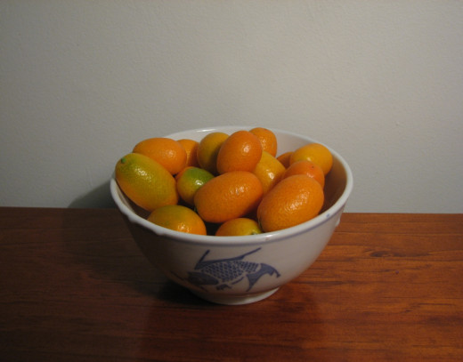 Nagami Kumquat Fruit