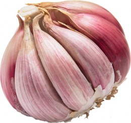 Garlic prevent heart attack