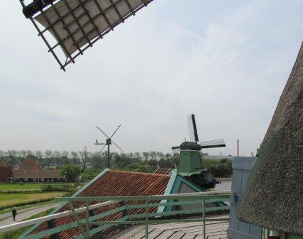 View from De Kat windmill.