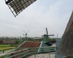 View from De Kat windmill.