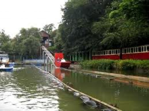 Take a ride down the Water Chute with one of the trains passing behind