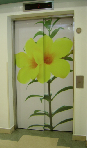Cheery flowers greet you as you enter the lifts