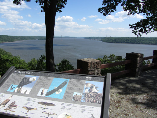 Overlook at Susquehannock State Park