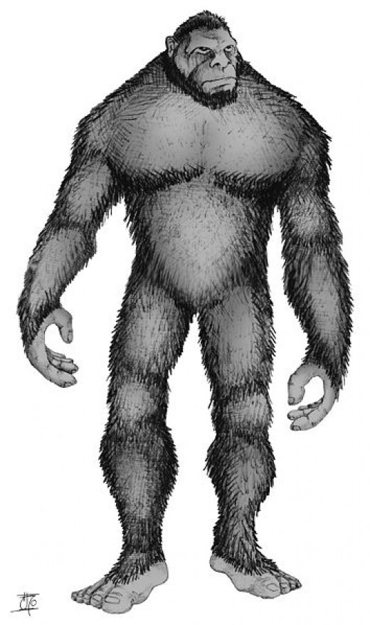 Bigfoot - Sasquatch. Image credit: Pie Grande via Wikimedia Commons