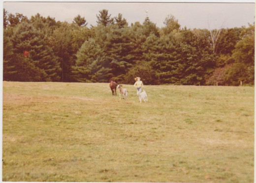 as a teen, obviously care free at the moment running with some of my beloved pets on our farm in New Hampshire.