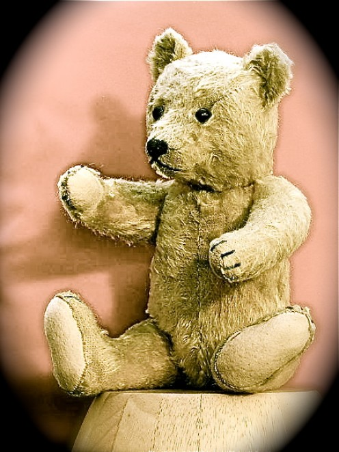 A Child's Teddy Bear