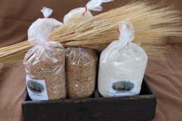 Organic certified Amish grains and flours