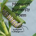 Monarch Butterfly Poem