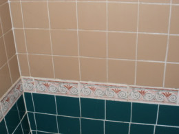 Shower grout cleaned with baking soda and water.  (forgive the lack of symmetry - I replaced the tile myself!)