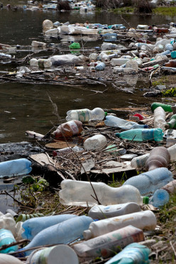 Non-Biodegradable Plastics Litter The Earth