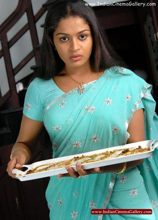 Malayalam Blue Film Actress S