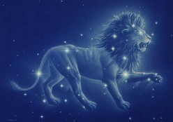So You're a Leo!