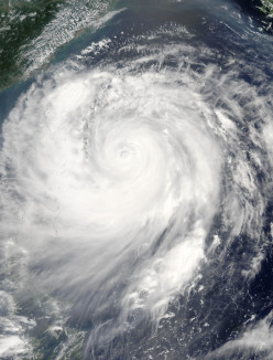 Did you suffer in any way from this Massive Hurricane Sandy Storm?