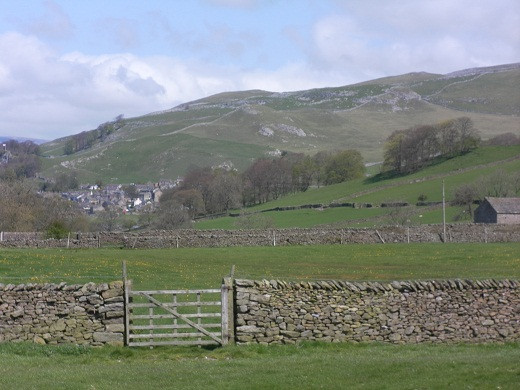 Dry stone walls near Settle, North Yorkshire