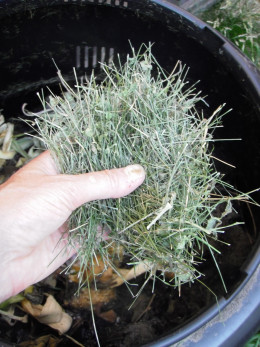Add fresh grass clippings to compost for nitrogen and heat.