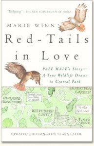Cover of Red-Tails in Love by Marie Winn