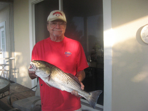 Florida Fishing Fave - Redfish