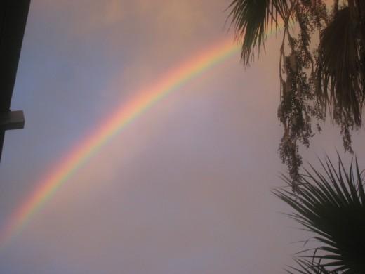 Rainbow of vibrant colors