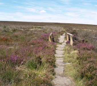 Quakers' Causeway, a stone-flagged track for the packhorse 'trains'