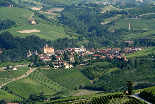 View from the Barolo Wine Museum