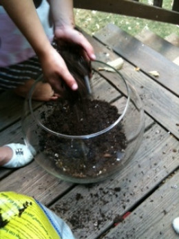 Step 3 - Add potting soil to cover the bottom third of the fishbowl