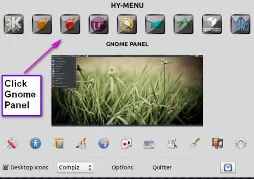 Click GNOME PANEL
