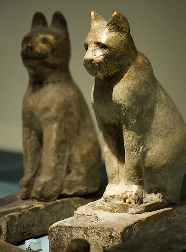 Mummy Cat Sarcophagi