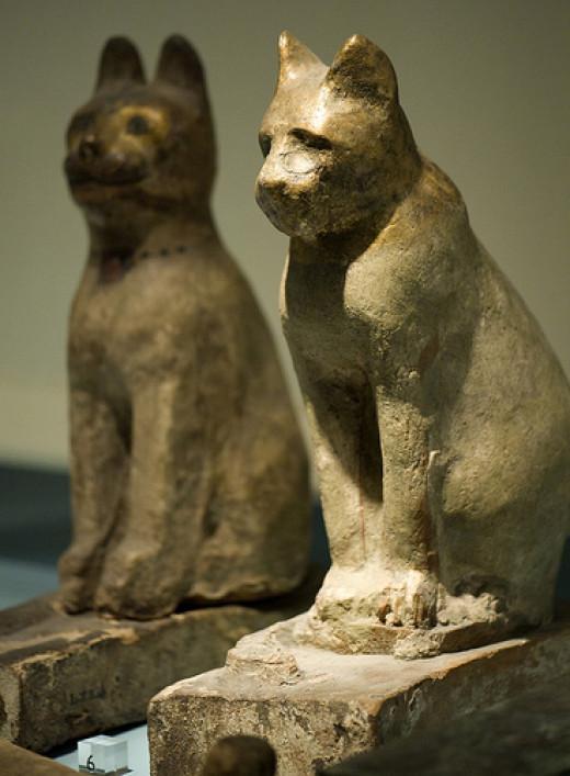 Mummy Cat Sarcophagi