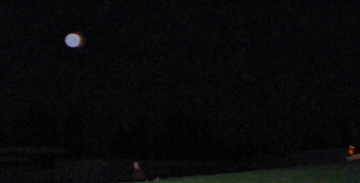Caught by an intuitive aim, I capture the largest spirit generated orb image  to date;  to the left of Nancy and good dog Otis.