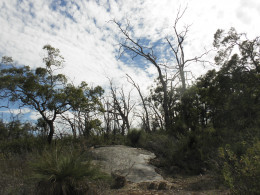 WA's Bibbulmun Track stretching an incredible   1 000 km through hills,