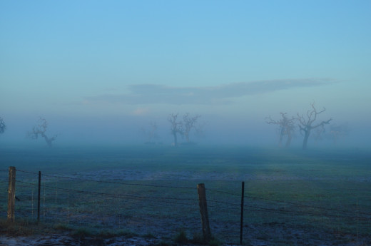and ghost farms. I have never been in a landscape so eerily quiet.