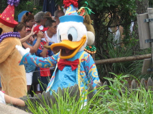 Donald Duck during the afternoon parade