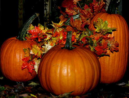 The venerable pumpkin brings color and texture to any fall garden