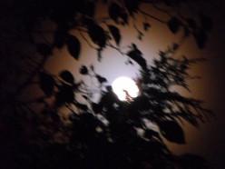 Full Moon Rising, Painting