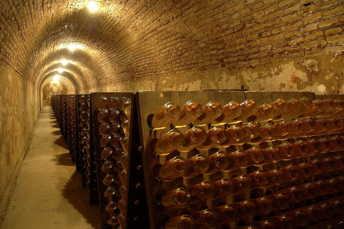 Louis Roederer Champagne Cellar