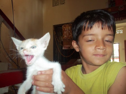 Kitty and my son