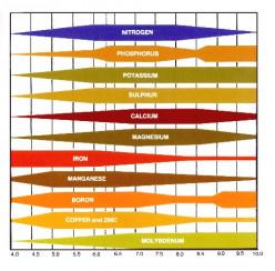 Secrets of Good Soil Fertility - Soil pH
