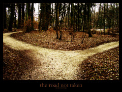 Ever take the road less traveled?